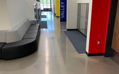 The Seven Most Important Things That You Should Consider When Looking At Polished Cement!
